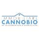 Immobiliare Cannobio