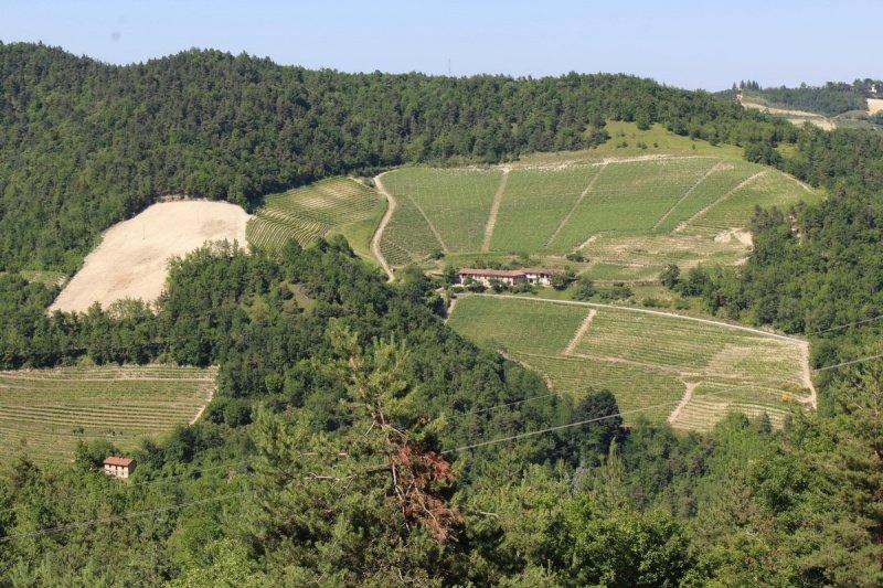 Explotación agrícola en Castino