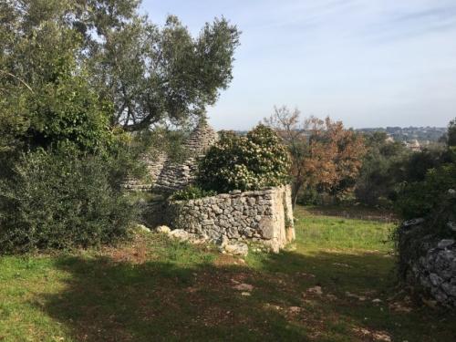 Trullo en Putignano
