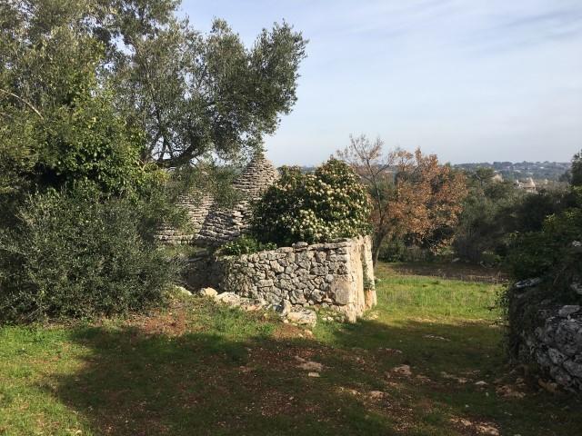 Trullo (Rundhaus) in Putignano
