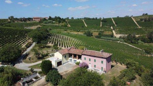 Explotación agrícola en Castelletto Molina