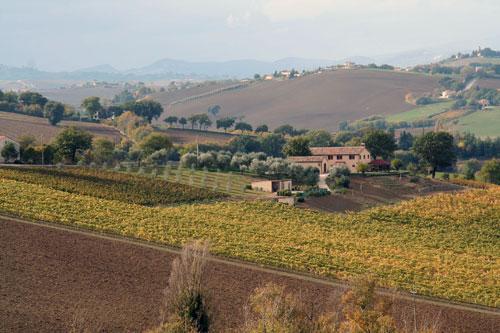 Cabaña en Serra de' Conti