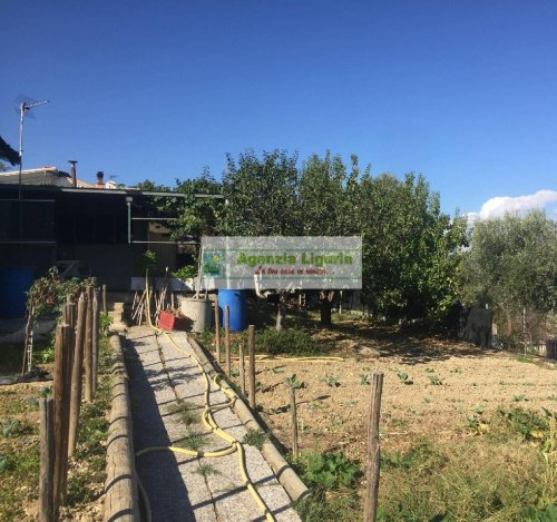 Landwirtschaftliche Fläche in San Biagio della Cima