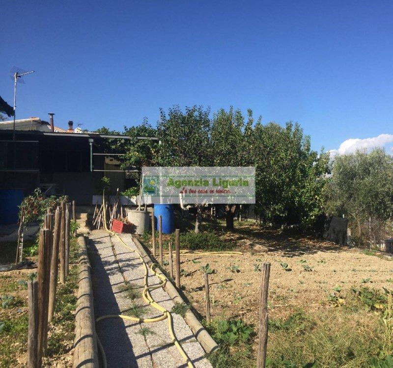 Terreno agrícola en San Biagio della Cima