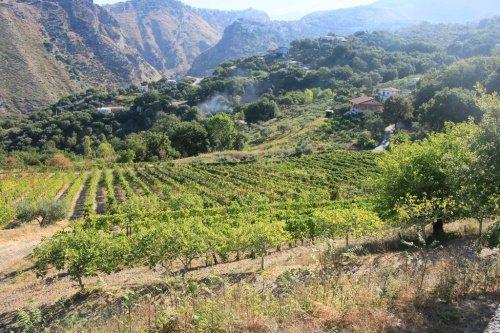 Agroturismo en Maierà