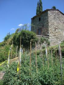 Bauernhaus in Fivizzano