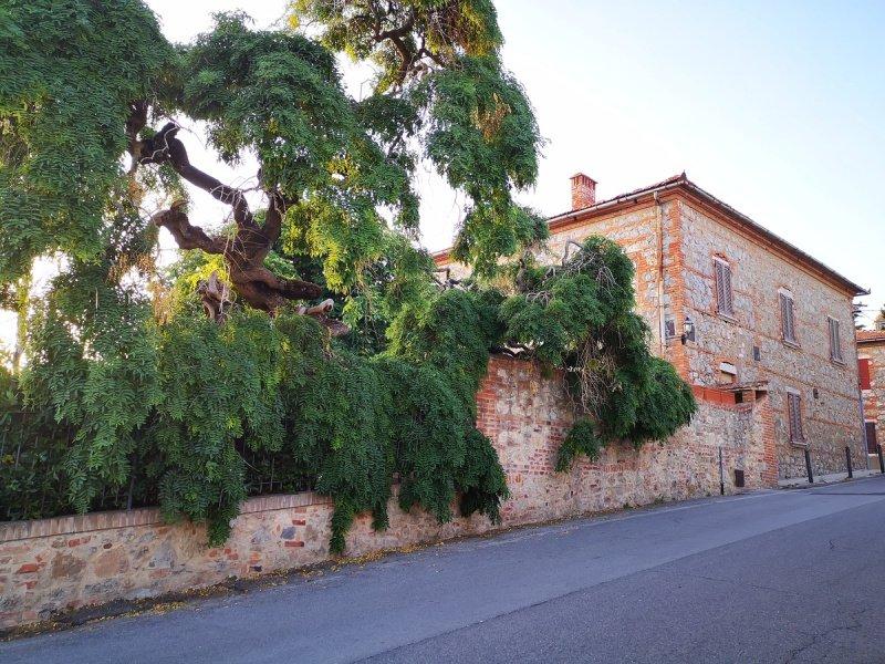 Casa independiente en Torrita di Siena