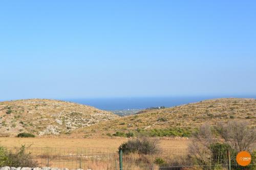 Terrain agricole à Avola
