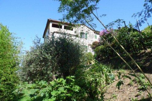 Farmhouse in Fosciandora