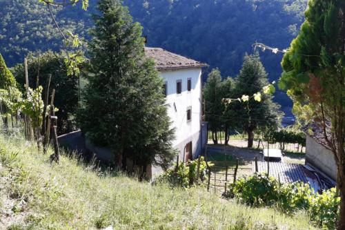 Hus på landet i Fosciandora