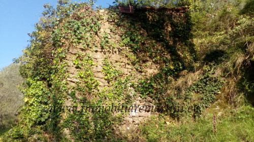 Land in Apricale