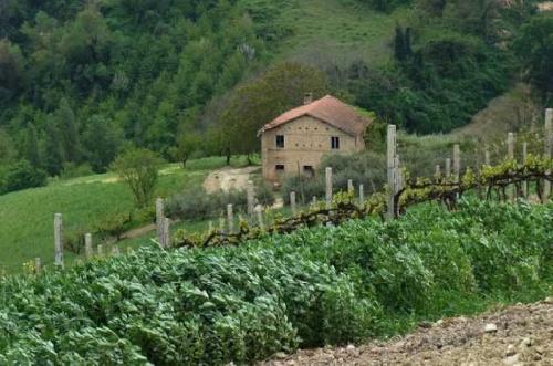 Casa di campagna a Carassai