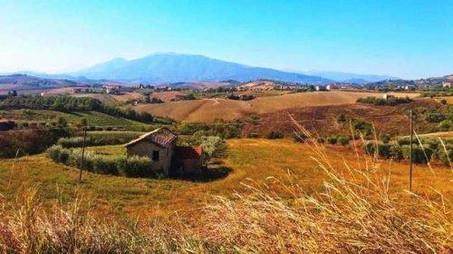 Hus på landet i Appignano del Tronto