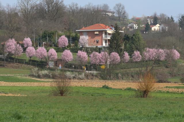 Casa en Villafranca d'Asti