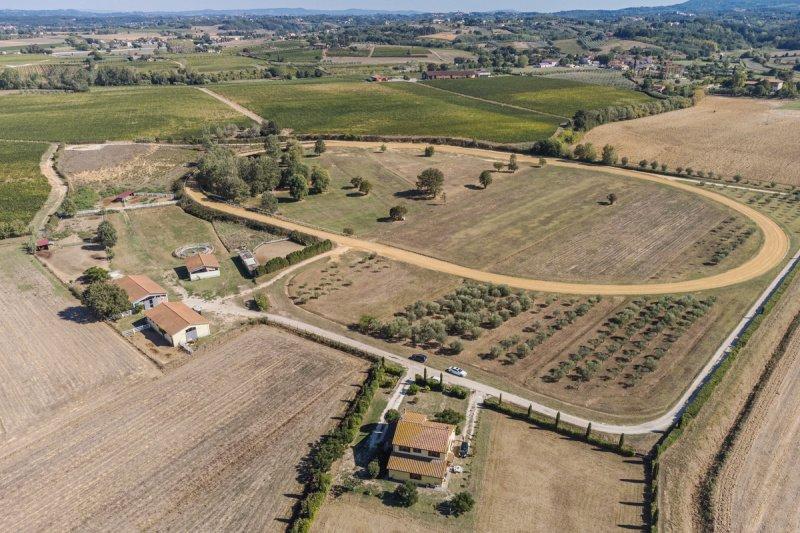 Explotación agrícola en Crespina Lorenzana