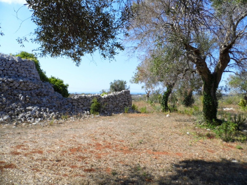 Trullo (Rundhaus) in Salve