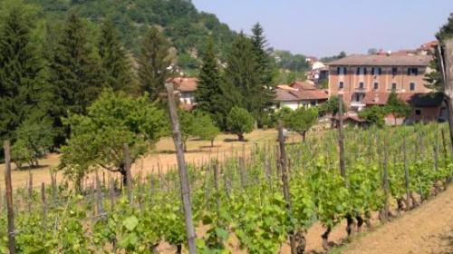Casa independiente en Castelletto d'Orba