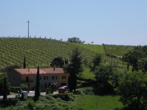 Casa di campagna a Semproniano