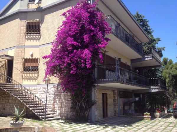 House in Tortoreto