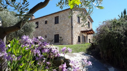 Country house in Montecchio