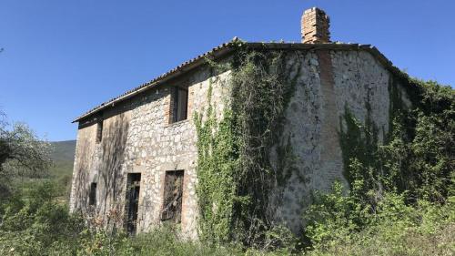 Farmhouse in Montecchio