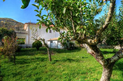 Farmhouse in Alvito