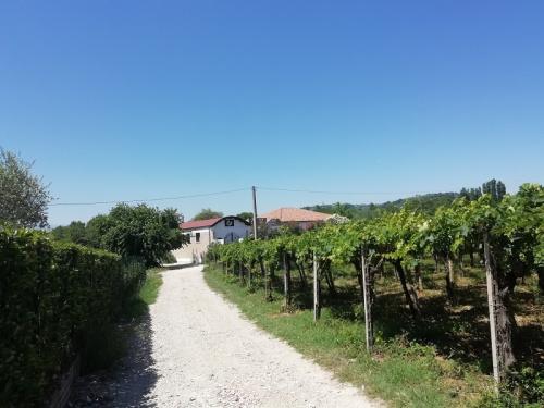 Maison de campagne à Miglianico