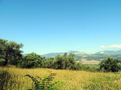 Terreno edificable en Scafa