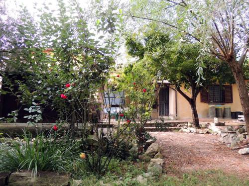 Maison individuelle à Scafa