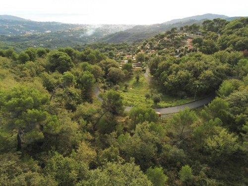 Landwirtschaftliche Fläche in Diano Arentino