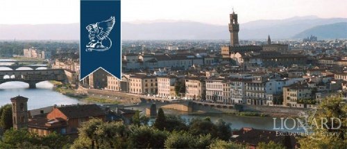 Inmueble comercial en Florencia