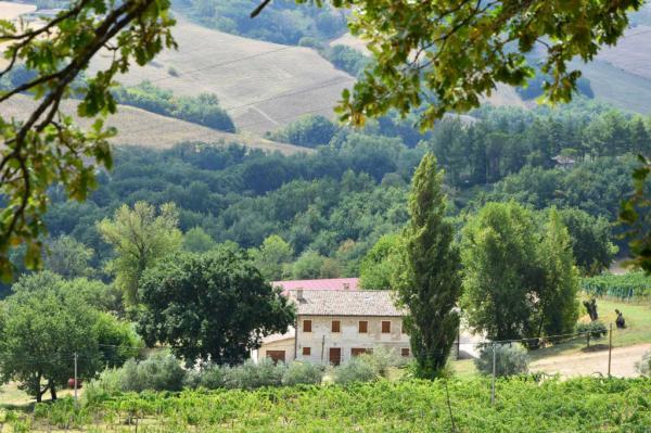 Casa en Arcevia