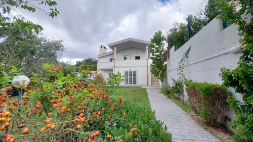 Detached house in Fiumicino