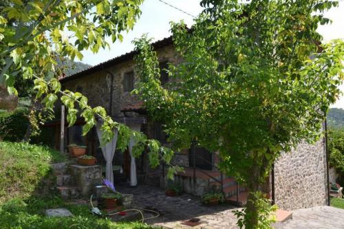 Farmhouse in Capannori