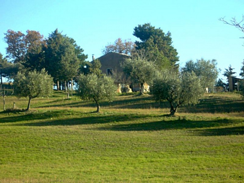 Bauernhaus in Campli
