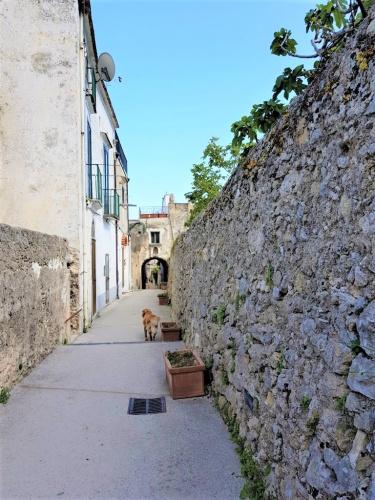 Appartement in Ravello
