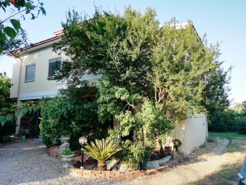 Villa in Oristano