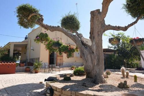 Villa i San Vito dei Normanni