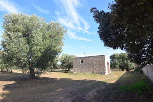 Cabaña en Carovigno
