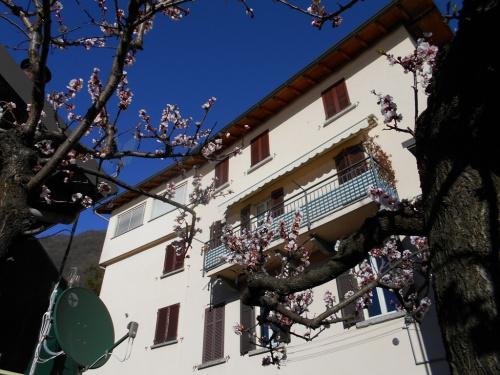 Appartement individuel à Pognana Lario
