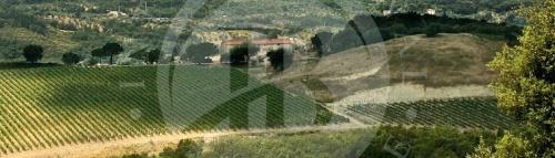 Boerenbedrijf in Grosseto