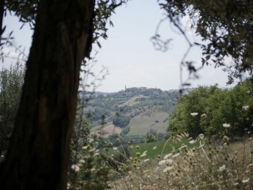 Maison à Sant'Omero