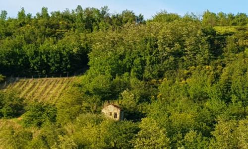 Casa de campo en Acqui Terme