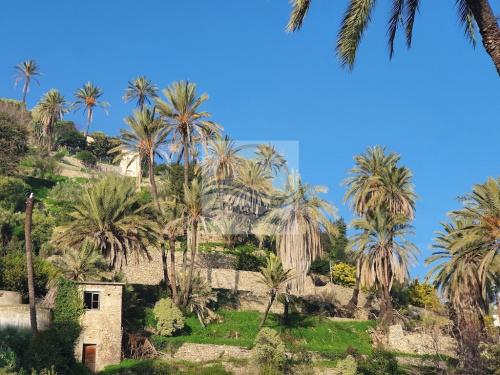 Terreno edificable en Bordighera