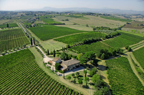 Explotación agrícola en Montepulciano
