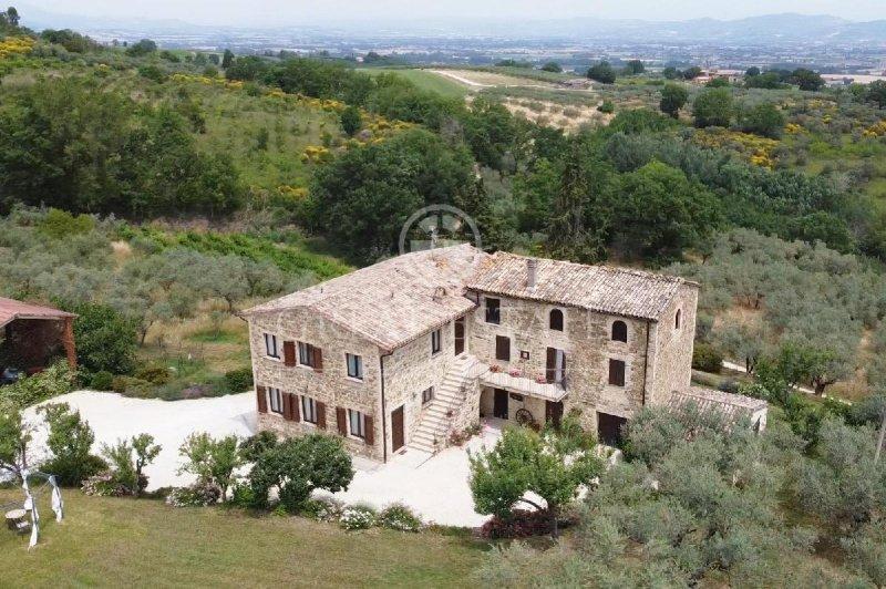 Farmhouse in Cannara