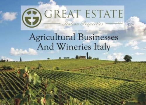 Explotación agrícola en Siena