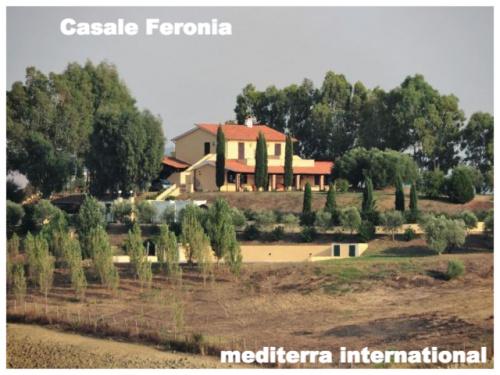 Villa in Montalto di Castro