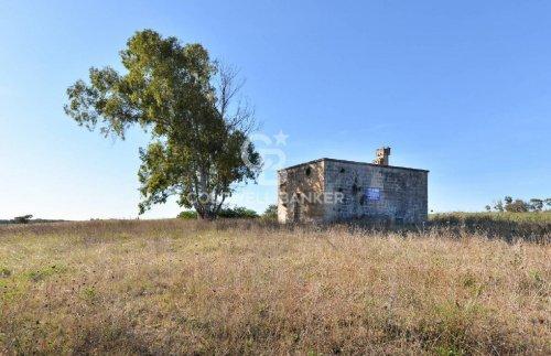 Trullo (Rundhaus) in Carovigno