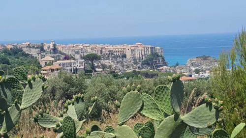 Casa semi indipendente a Tropea